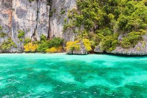 baia delle scimmie nell'isola di phi phi foto