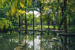 scenario del parco delle paludi di dadong, kaohsiung, taiwan foto