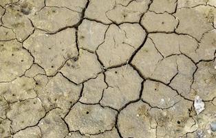 trama di terra screpolata foto