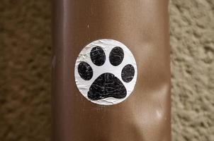 segno dell'impronta della zampa del cane foto