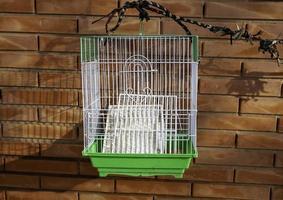gabbia per uccelli vuota foto