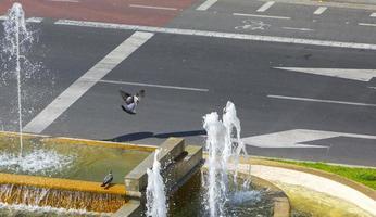 i piccioni si rinfrescano in una fontana nel quartiere di arganzuela a madrid, in spagna foto