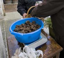 Mercato tradizionale del tartufo nero di lalbenque nel perigord, francia foto