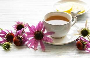 tè all'echinacea con limone e fiori freschi. foto