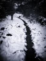 donna che cammina sulla neve foto