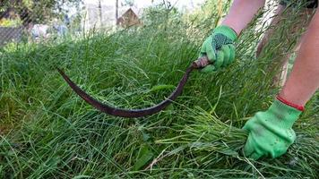 processo falciare l'erba con una falce foto