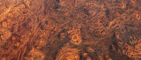 legno di radica di quercia naturale rigato foto