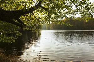 il pacifico bellissimo paesaggio diurno foto