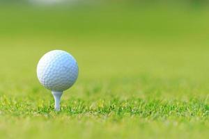 pallina da golf sul tee su erba verde, campo da golf foto