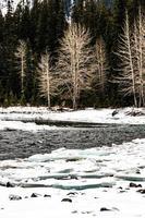 il fiume di prua dalle cascate nel periodo invernale. parco nazionale di banff, alberta, canada foto