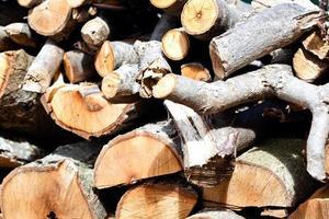 sfondo di legna da ardere tagliata a secco foto