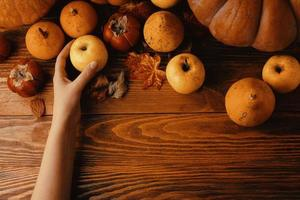 un mazzo di zucche e mele. foto
