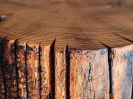un primo piano di un taglio di sega di un grosso ceppo di acacia foto