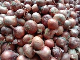 brodo di cipolla sano e piccante in negozio foto