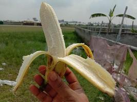 primo piano di banana espansa gustosa e salutare foto