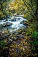 scenario pittoresco dal sentiero dei rampicanti della Virginia in autunno foto