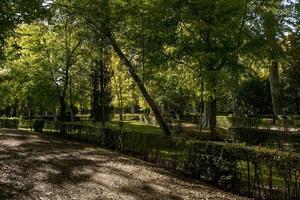 l'autunno arriva nei parchi della provincia di madrid, in spagna foto