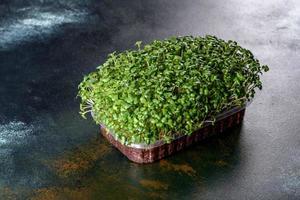 scatola con germogli freschi di micro ravanelli verdi per aggiungere cibo sano ai piatti foto