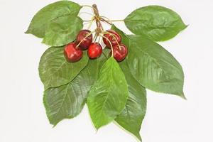 bacche di ciliegia con foglie verdi su sfondo bianco foto