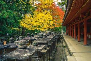 kasuga taisha, un santuario delle mille lanterne a nara, kansai, giappone foto
