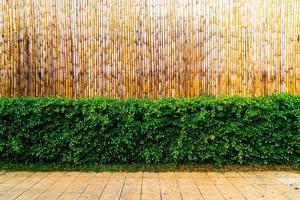 albero con sfondo di bambù e spazio di copia foto