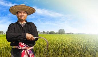 contadino nella risaia foto