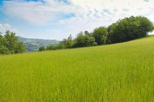 paesaggio naturale con bellissime colline verdi foto