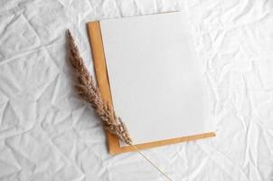 carta bianca vuota con busta, erba della pampa foto
