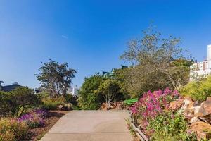 il parco ina coolbrith a san francisco, california, usa foto