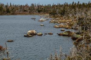 viste da una passeggiata intorno al laghetto di berryhill. parco nazionale del gros morne, terranova, canada foto