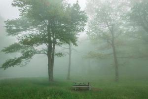 mattinata nebbiosa nell'area picnic delle montagne della cresta blu foto