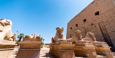 statue antiche di molte pecore nel tempio di karnak a luxur foto