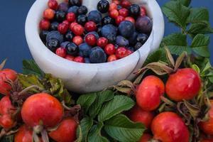 medicina alternativa con erbe farmaceutiche frutti e bacche foto