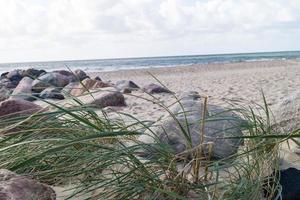 sulla spiaggia di blavand ho danimarca foto