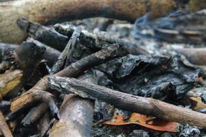 primo piano del carbone di legna del falò foto