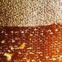 goccia di miele d'api stillicidio da favi esagonali riempiti foto