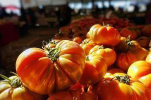 pomodoro vegetale sano e succoso foto