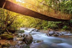 insenatura della foresta nel parco nazionale di rincon de la vieja in costa rica foto