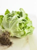 lattuga verde dell'orto foto