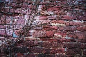 struttura del fondo del muro di mattoni di pietra del grunge foto