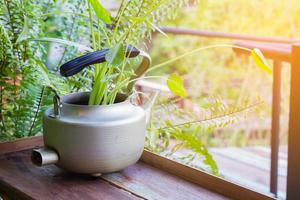 piante decorative in bollitore d'epoca su sfondo di legno foto
