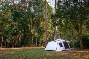 campeggio e tenda nel parco naturale foto