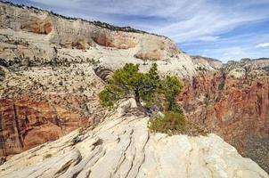cresta esposta nel paese del canyon foto