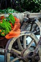 vecchie ruote di carrozza per carrozze di cavalli in legno foto