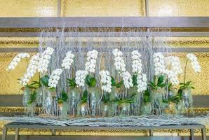 molte decorazioni floreali di orchidee bianche per lo sfondo foto