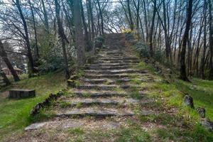 vista dal basso della scalinata del parco tra gli alberi in primavera foto