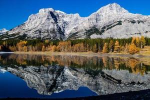 cuneo stagno un giorno d'autunno crips. parco provinciale della valle dello spruzzo. foto