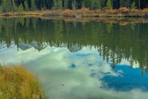 ciglio della strada. parco provinciale spray valley foto