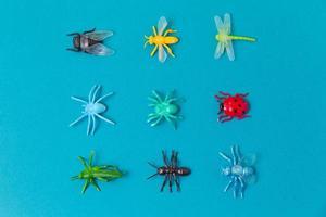 disposizione del soggetto di biologia con gli insetti foto
