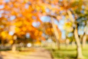 bellissimo sfondo sfocato di un parco in autunno foto